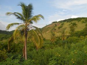 haiti-85873_640